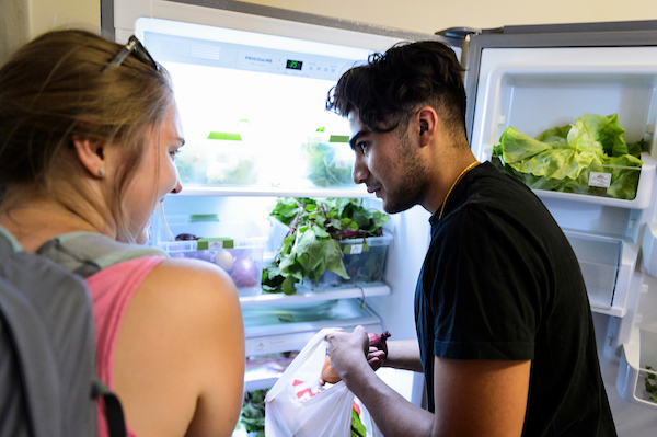A student puts produce from a refrigerator into a plastic bag to take home.